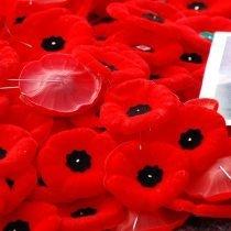 Remembrance Day - Poppies_by_Benoit_Aubry_of_Ottawa