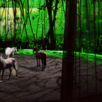 Discover the magic that is Cavalia Odysseo! {Review}