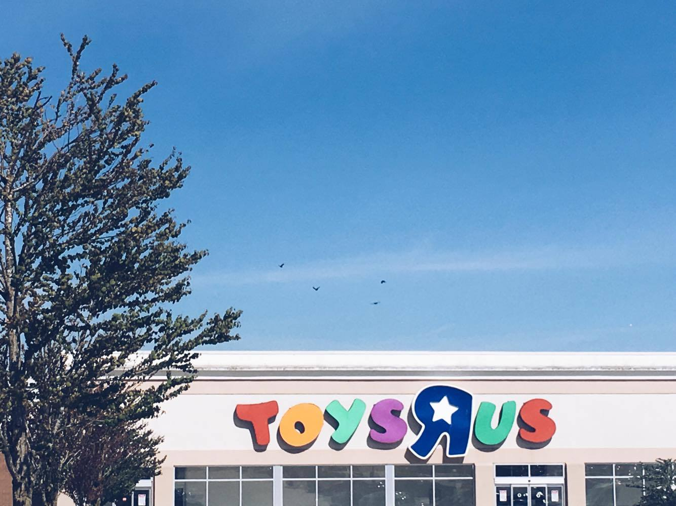 """Toys""""R""""Us Langley Opening"""