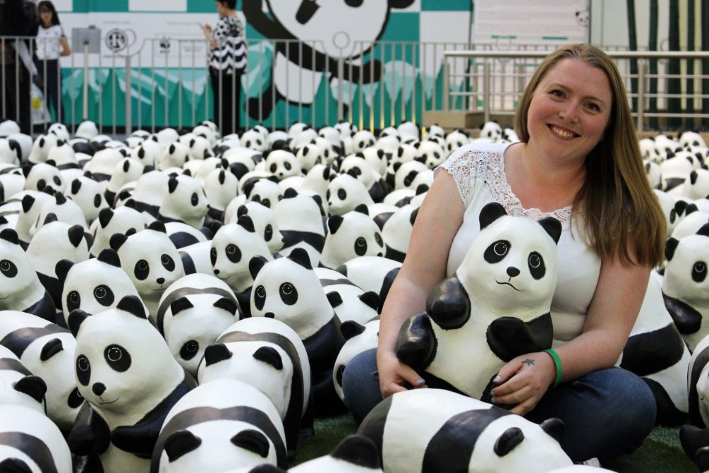 Photo Credit: Ava To Zoe Janette Shearer - 1600 Pandas+